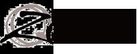 Lingerie, Shapewear, Swimwear & Activewear | Zodee Australia